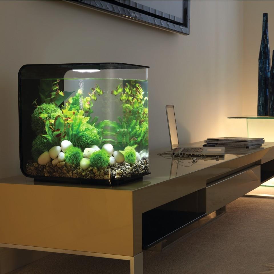 biorb deko aquarium flow 30 mit led 30 liter oase. Black Bedroom Furniture Sets. Home Design Ideas