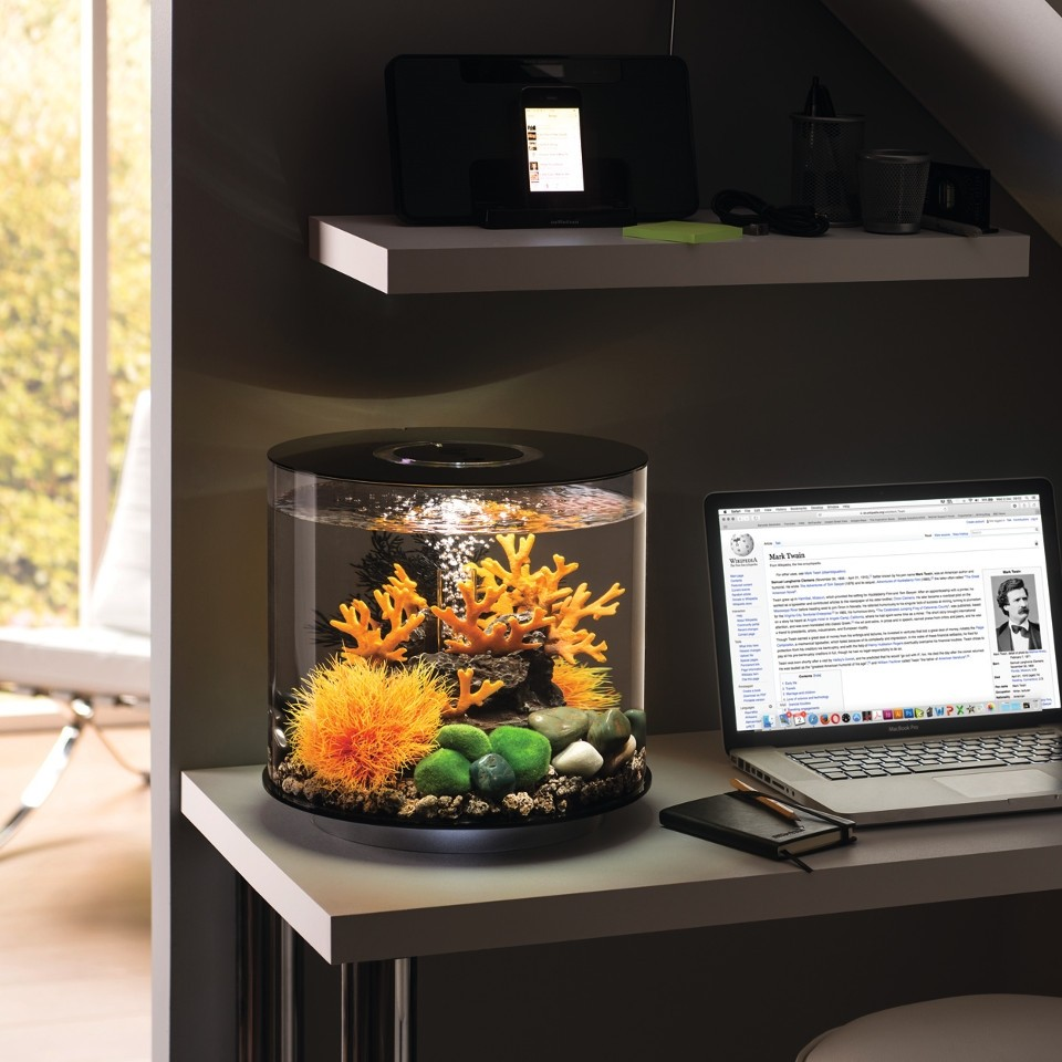 biorb deko aquarium tube 30 mit led 30 liter oase. Black Bedroom Furniture Sets. Home Design Ideas