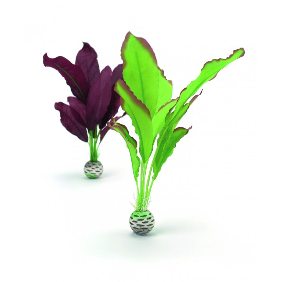 Biorb seidenpflanzen set mittel gr n lila oase for Lila und grun mischen