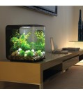 biOrb Design Aquarium FLOW 30 mit LED - 30 Liter