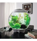 biOrb Design Aquarium HALO 30 mit LED -  30 Liter