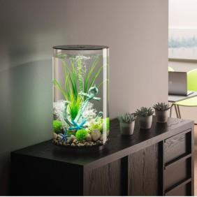 biOrb Design Aquarium TUBE 30 mit MCR - 30 Liter