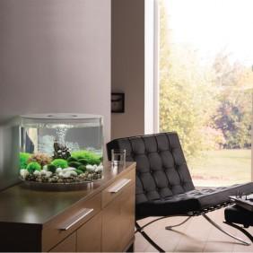 biOrb Design Aquarium TUBE 35 mit LED -  35 Liter