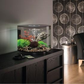 biOrb Design Aquarium TUBE 35 mit MCR - 35 Liter