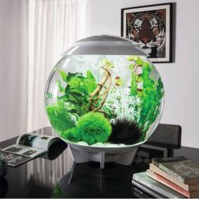 biOrb Design Aquarium HALO 30 mit LED -  30 Liter