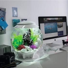 biOrb Design Aquarium HALO 15 mit MCR - 15 Liter