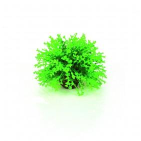 biOrb Blumenball grün