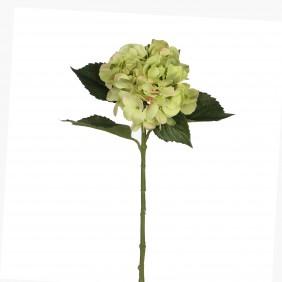 MICA Kunstpflanze Hortensien in Grün