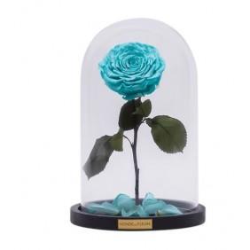 Monde des Fleurs LA BELLE Infinity Rose in Türkis