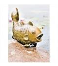 "Heissner Teichspeier ""Big Fish"" 003291-00"