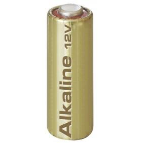 Seliger Eratzbatterie 12V