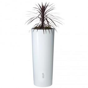 Graf Garantia Color 2in1 Wasserbehälter Regenwassertank coco bepflanzt