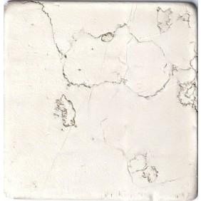 Antik Marmor 1 cm Beige  10x10x1 cm getrommelt