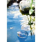 Heissner Pond Skim - Oberflächenreiniger F550-00 Anwendung