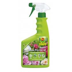 COMPO Duaxo Rosen Pilz-frei AF (750 ml)