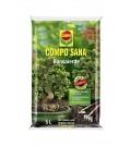 COMPO SANA® Bonsaierde 5 L