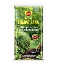 COMPO SANA® Grünpflanzen- und Palmenerde