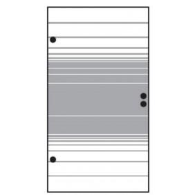 T&J VETRO Glas-Sichtschutz Streifen Dekor Tür
