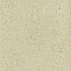 CLAYTEC Lehm-Streichputz jade-grün 3.2