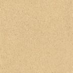 CLAYTEC Lehm-Designputz YOSIMA Edition gold-ocker 4.2