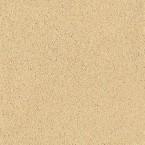 CLAYTEC Lehm-Streichputz gold-ocker 4.2