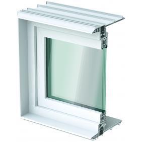 Leibungsfenster
