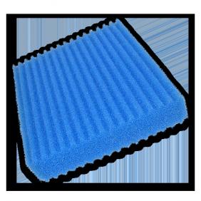 Filterschwämme (einzeln)