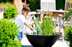 Heissner Wassergarten