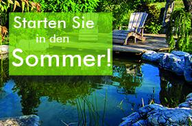 Teichpflege im Sommer