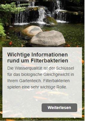 Warum, wofür, weshalb? Nützliche Infos rund um Filterbakterien | www.oase-teichbau.de