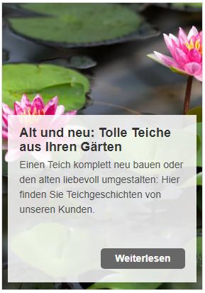 Tolle Chance für Ihren Teich - beim großen Mein-Teichprojekt Gewinnspiel www.oase-teichbau.de