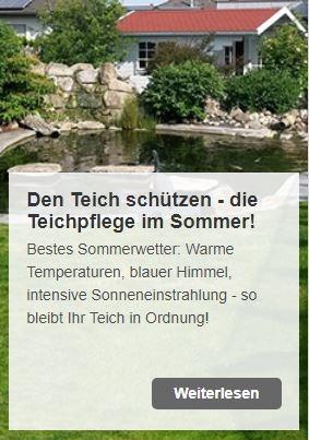 Teichpflege im Sommer - worauf achten und was Sie wissen müssen | www.oase-teichbau.de