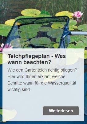 Teichpflegeplan: So halten Sie ihren Teich mit Oase AquaActiv Produkten fit | www.oase.teichbau.de