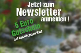 Newsletter erhalten