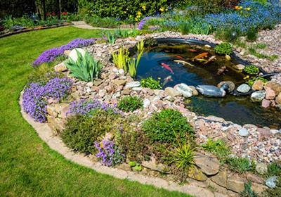 Machen Sie Ihren Teich fit für den Frühling